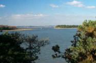 Furzey & Green Island